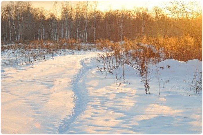 Охотничий календарь: Январь