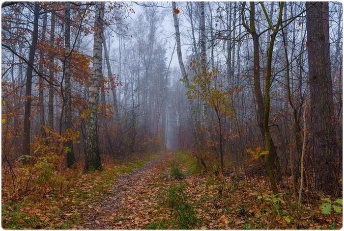 Охотничий календарь: Октябрь