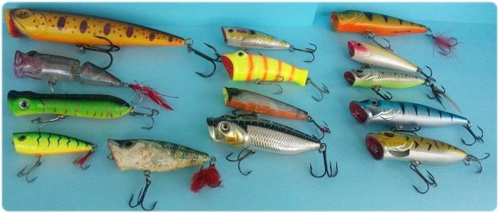 Какая рыба ловится на поппер?