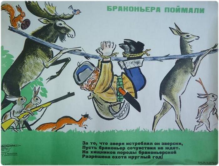 Особенности наказания за незаконную охоту